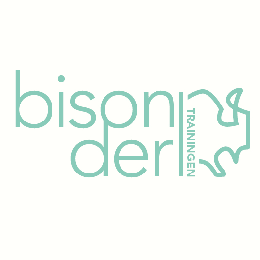 Bisonder trainingen logo, huisstijl en website